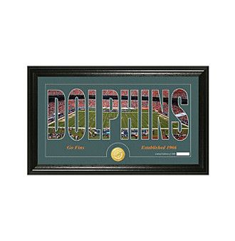 """NFL® Miami Dolphins """"Silhouette"""" Bronze Coin Panoramic Photo Mint"""
