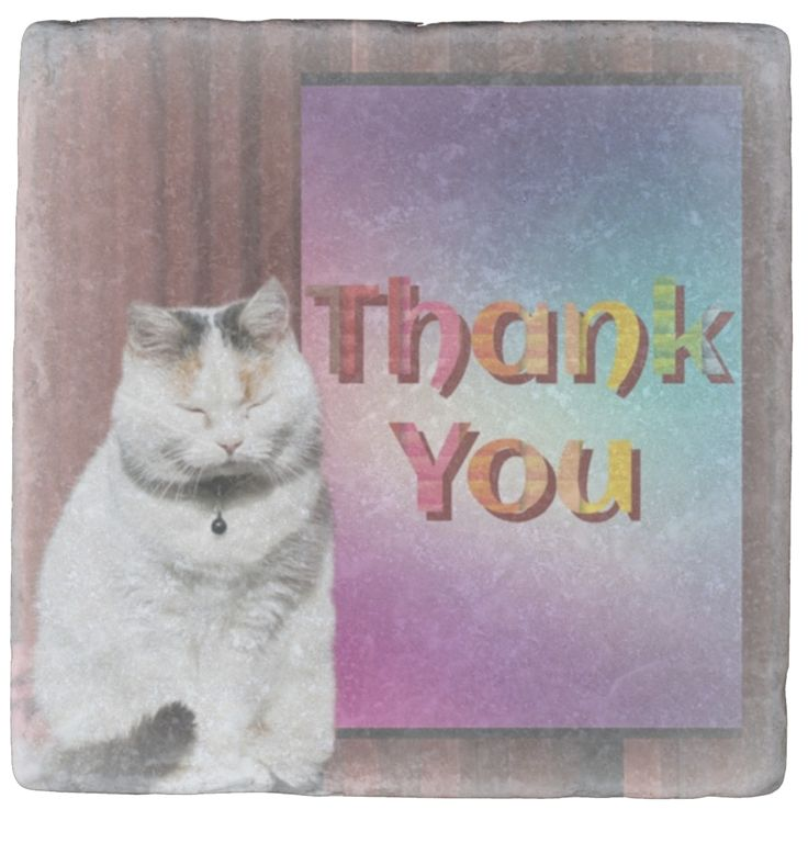 """""""Thank You"""" are two of my very favourite words. They are so warm and appreciative. My gorgeous Pussycat feels the warmth, so she's taking a """"cat nap"""". When people say """"Thank you"""" to me I feel like I want to do more - because it's obviously appreciated. This unusual marble Coaster would make a lovely gift I think. In fact I'm doing a whole series of """"Thank you"""" Coasters."""