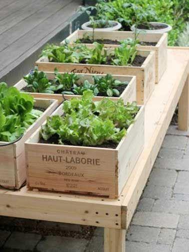 Récupérer des caisses à vin pour faire un jardin potager