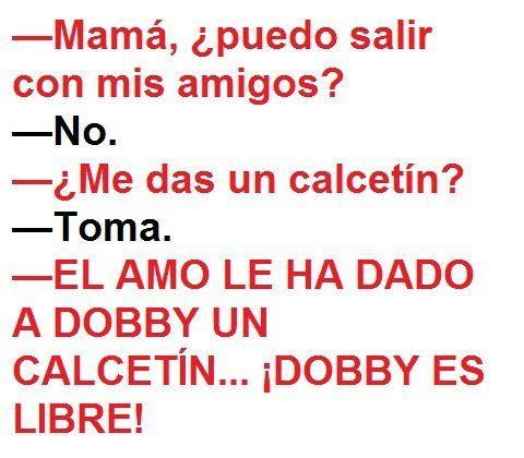 ¡Dobby es libre!