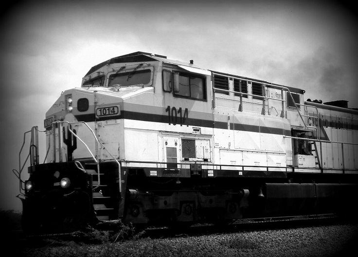 Train, La Alta Guajira