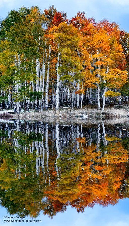 Autumn's Reflections.....magnifique paysage automnal.....