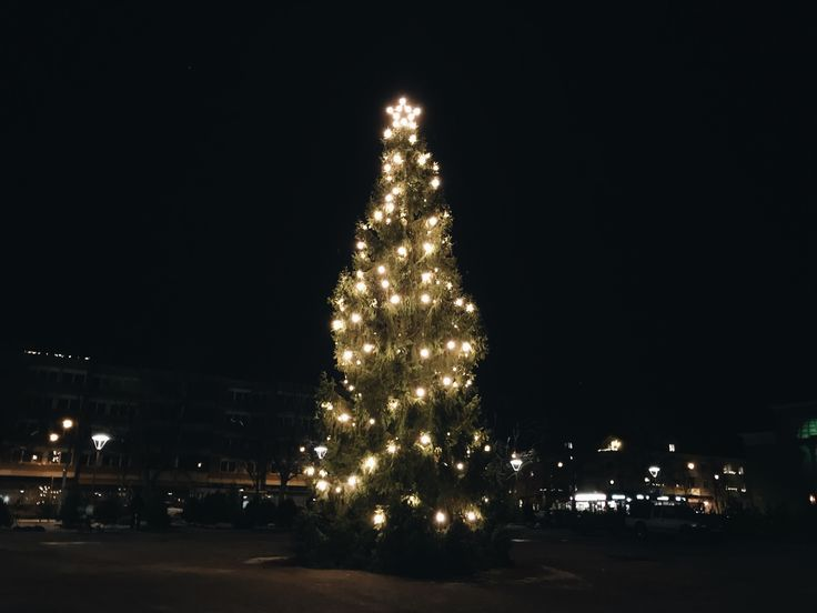 Day 19: Merry Swedish Christmas Eve