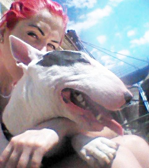 my dog bully big nose funny eye pink head pink tattoos dont mess with us lovedogs my little monster mom in love hugs pitbull bullterier