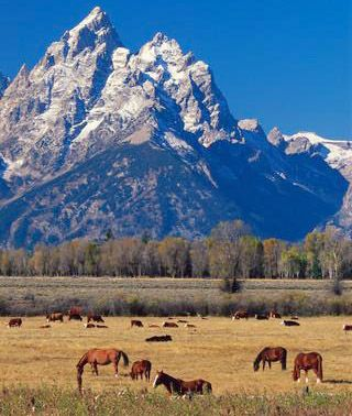Wyoming.  I always picture it as this really beautiful, mostly empty, state.  Just the kind of place I want to move to.