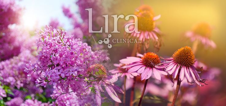 The Lira Clinical team are ingredient combination masters! We have combined the Lilac and Echinacea Plant Stem Cells to deliver superior skin balancing results. Discover the amazing skin soothing and acne fighting properties behind these unique floral PSC's.  http://issuu.com/lira-clinical/docs/lirapscfactbooket