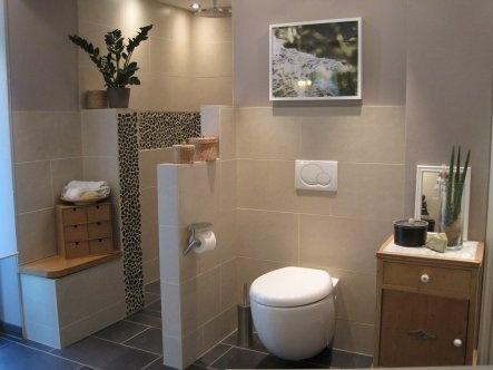 63 best Badezimmer images on Pinterest Bathroom, Bathrooms and - badezimmer sanieren kosten