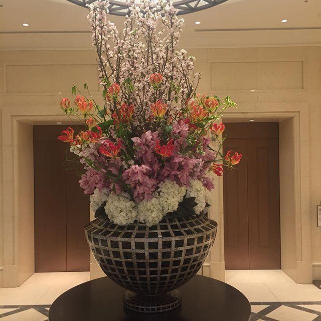 【chisu100】さんのInstagramをピンしています。 《#東京ステーションホテル#春#生け花#桜#ikebana#ロビー#花#cherryblossoms#flower #flowers Spring is just around the corner🌸》