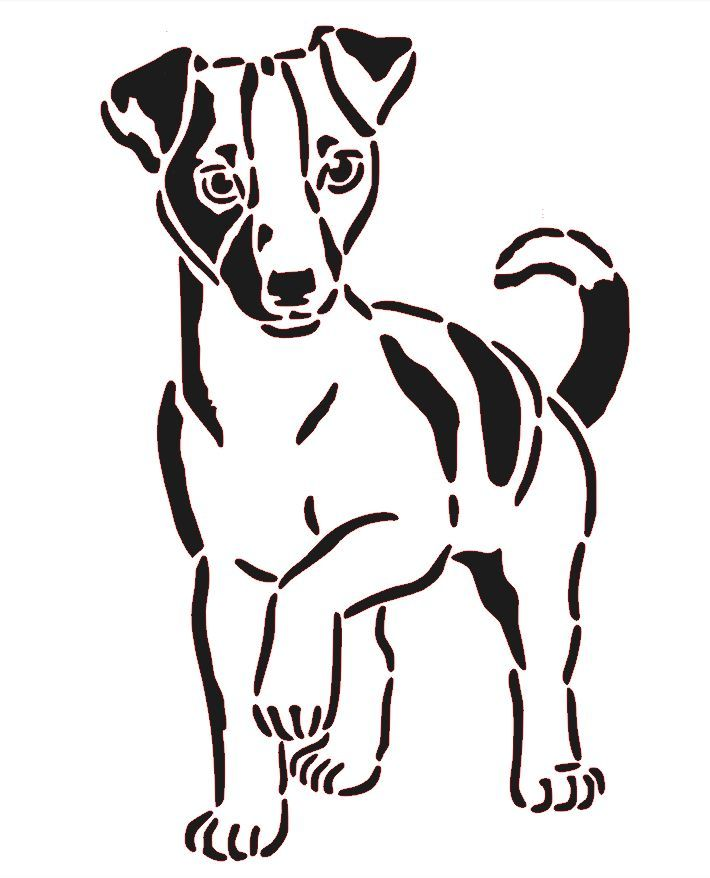 93 besten tierheim Bilder auf Pinterest | Hund katze, Haustiere und ...