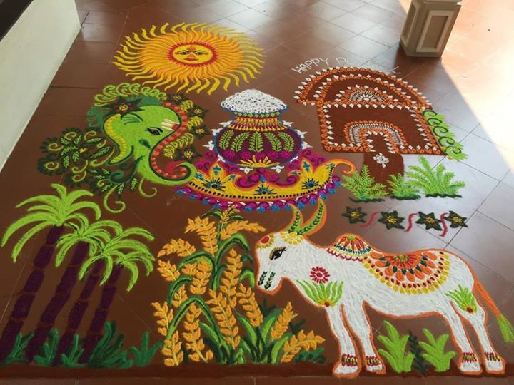 16 Best My Kolam And Rangolis Images On Pinterest