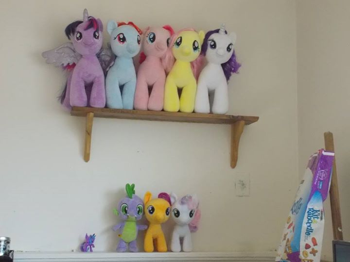Twilight Sparkle, Rainbow Dash, Pinkie Pie, Fluttershy, Rarity, Spike, Scootaloo, and Sweetie Belle