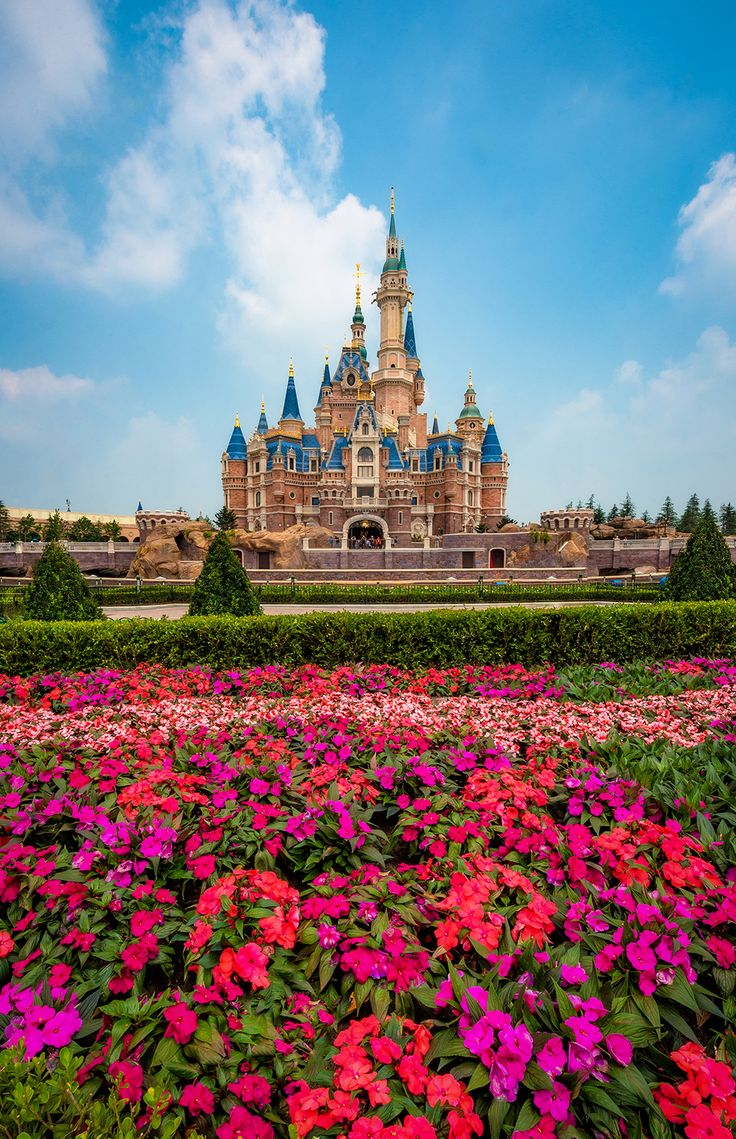 Shanghai Disneyland is Disney's newest park, located in China. This travel planning guide covers all facets of a visit to Shanghai Disney Resort, from gene
