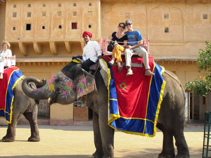 Indulge yourself in innumerable activities at Palace on Wheels on your trip especially the Elephant Riding and Feeding them. Palace on Wheels truly offers you a memorable experience to withhold forever.