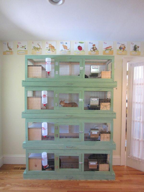 VERY cool indoor rabbit hutches!