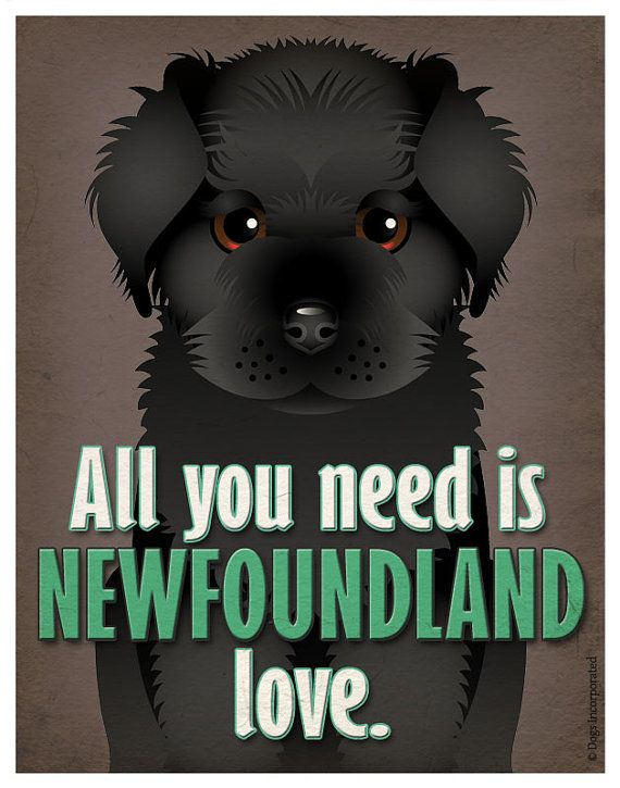All you need is Newfoundland love