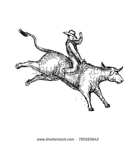 Drawing sketch style illustration of a rodeo cowboy riding a bucking bull on white background.  #rodeo #drawing #illustration