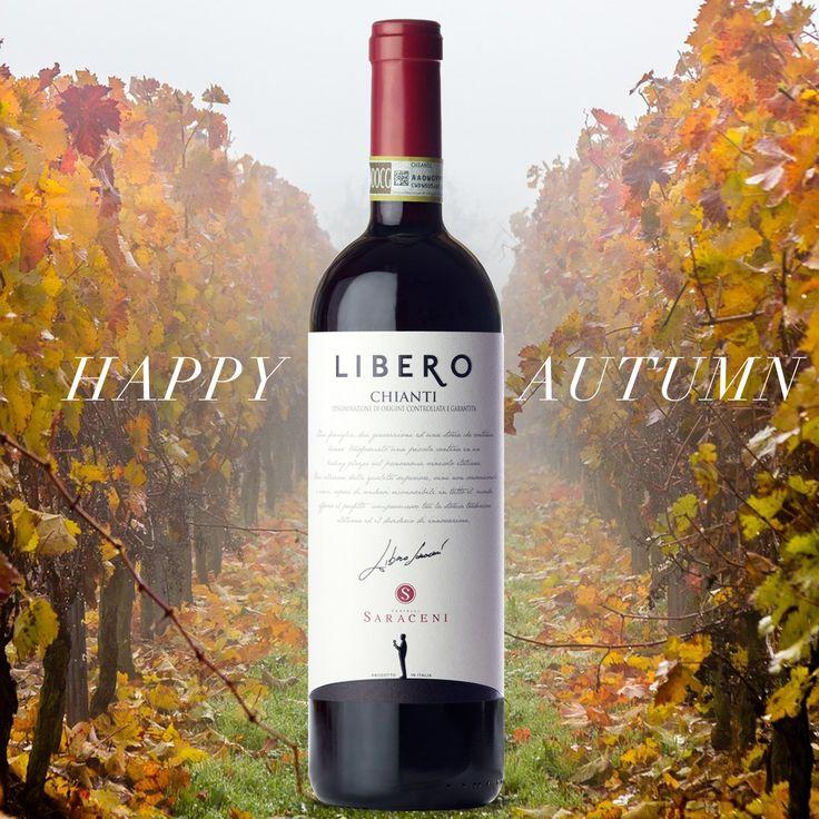 Fratelli Saraceni Libero Chianti... An Italian red wine