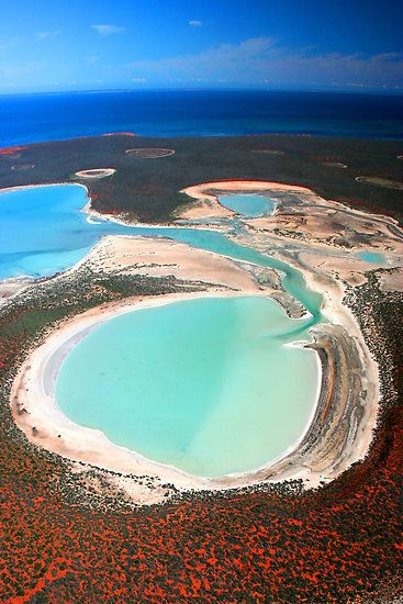 This is an image of the peninsulas and lands of Shark Bay.