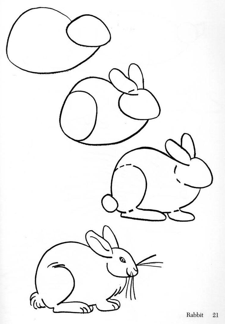 (2013-12) ... a rabbit