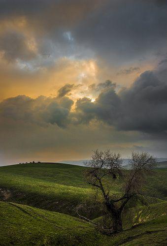 Breckenridge Hills - Kern County, California by Steve Rengers