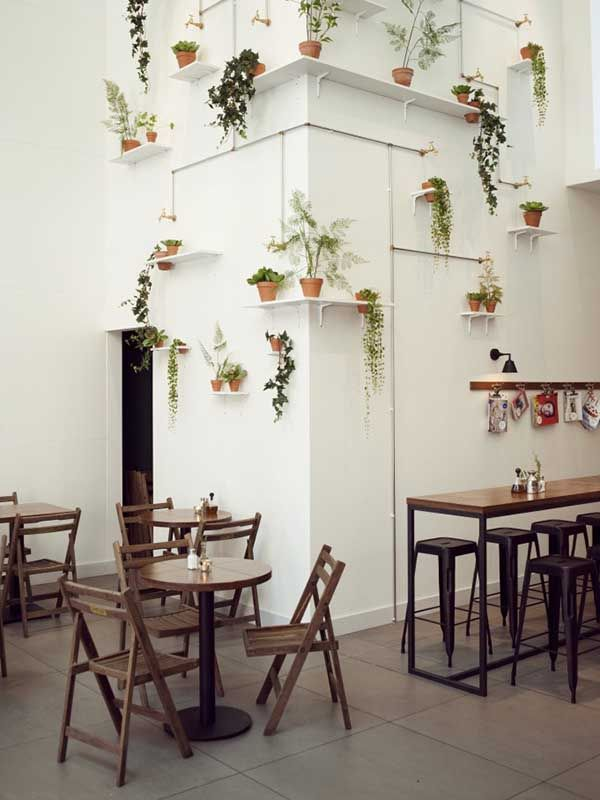 Plants on shelves #cafe #white #timber