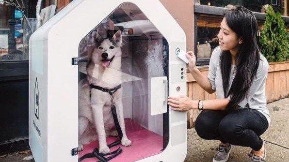 In New York gibt es jetzt Parkhäuser für Hunde - Wirtschaft ...  Nie wusste Chelsea Brownridge, wo sie ihren Hund lassen sollte. Deshalb gründete die New Yorkerin ein Start-up für Hightech-Hundehütten.