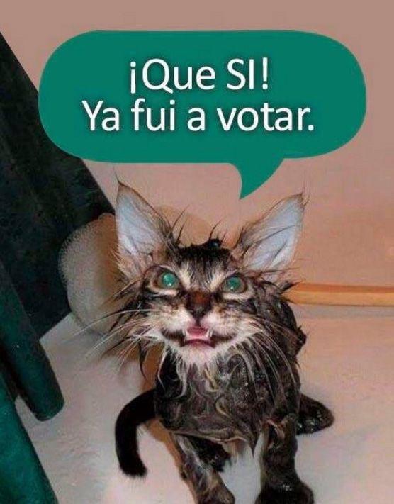 Los memes NO dejaron escapar la jornada del plebiscito en Colombia