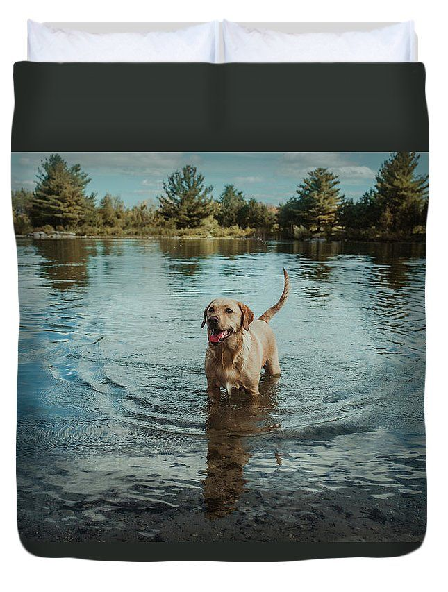 """Sandy in the Water"" landscape and dog photography on a duvet cover for the bedroom by Valerie Rosen Photography"