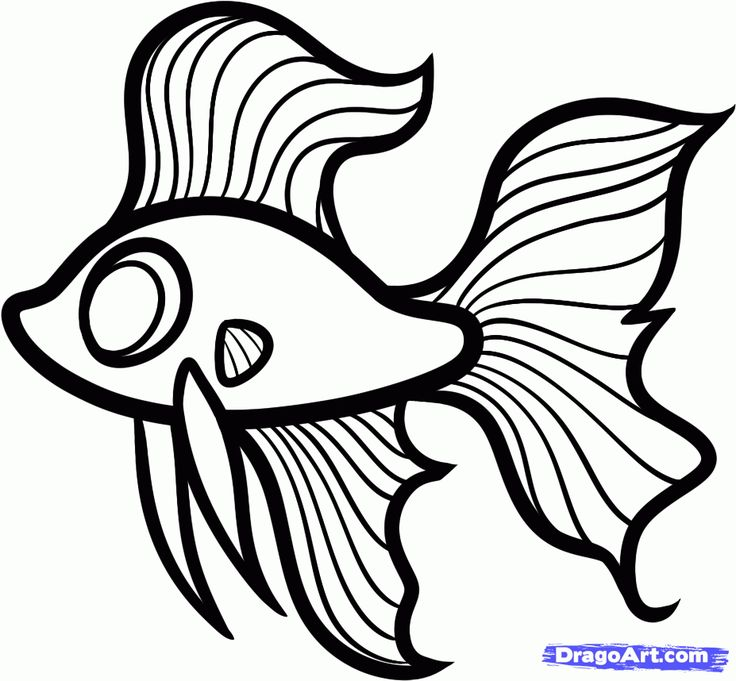 How to Draw a Betta For Kids, Betta Fish, Step by Step, Animals ...