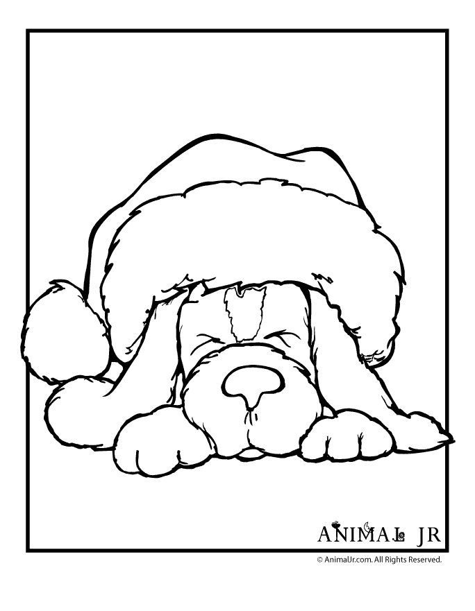 free christmas hat coloring pages - photo#33