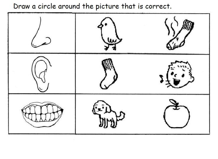 5 senses worksheet for kids (11)