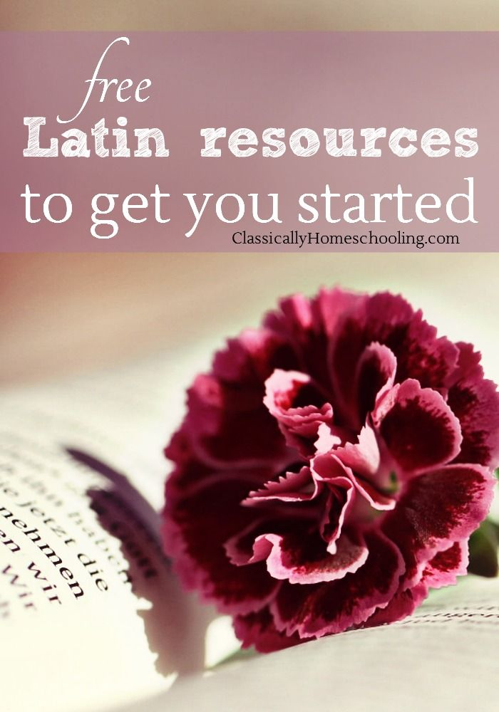 Latin for Beginners by Benjamin Leonard D'Ooge - Free eBook