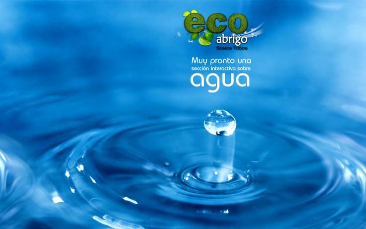 Muy pronto en Ecoabrigo.  www.ecoabrigo.com.co