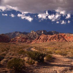 Leaving Las Vegas: top things to do nearby without a casino in sight - Lonely Planet