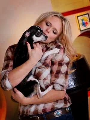 Miranda lambert has 6 adopted dogs