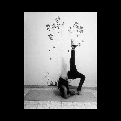 #asana #urdhvadhanurasana #yoga #yogi #yogavenezuela
