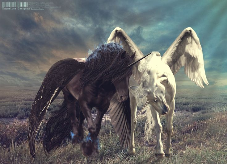 Devotion [Trade] by Moonstone-Designs on deviantART  *****This is a stunning image!  If a unicorn has wings, is it a unicorn or a pegasus?  What do you think?  Reply here*****