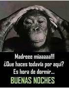 buenas noches more memes buenas buenas noches frases chistosas time ...