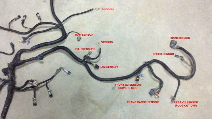 Vortec 4 8  5 3  6 0 Wiring Harness Info