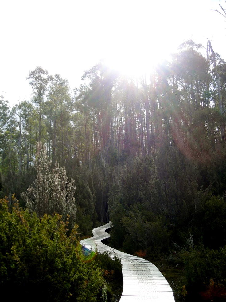 The beauty of nature in Tasmania..would love to go one day