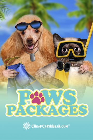 For those pups (and the few cats) that love to frolic in the water, we've got an all-inclusive #PawsPackage for that!