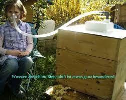 Imagini pentru bienenluft