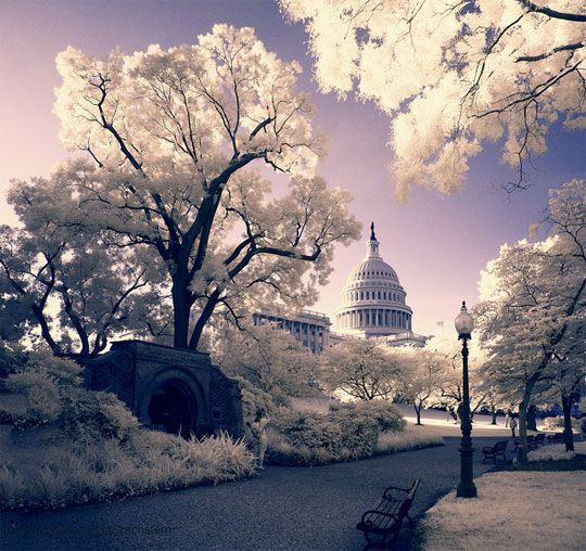 photography | 20 Breathtaking Examples of Infrared Photography | Inspiration