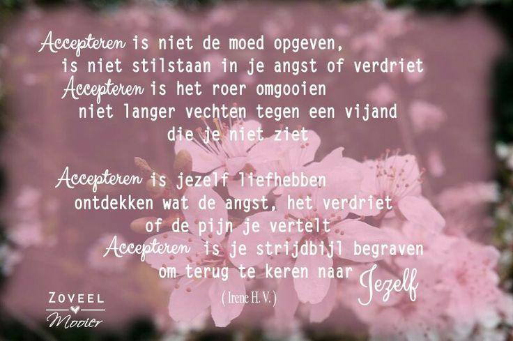 Accepteren? Ja daaag! Blog over accepteren op www.zoveelmooier.nl