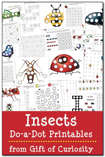 23 pages of insects do-a-dot worksheets to help kids build their knowledge about insects while working on skills such as patterning, letters, and numbers.