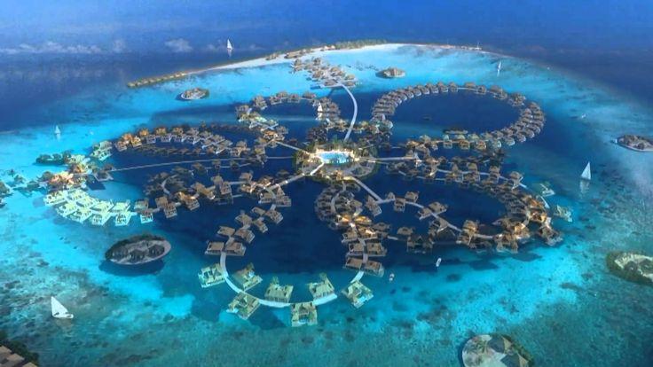 Понырять с акулами, дельфинами и у останков затонувших кораблей ✔Дайвинг на Мальдивах — это магнит, который притягивает к себе тысячи дайверов со всего мира.