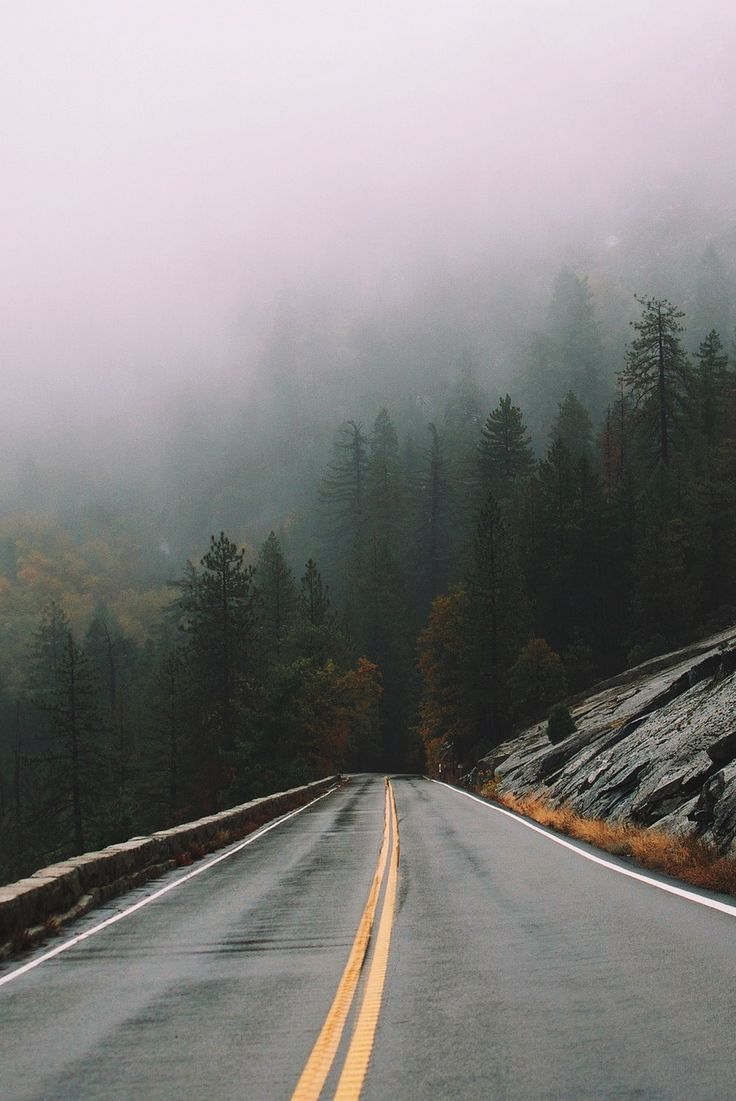 landscape | nature | road | nowhere | photography | travel | explore | adventure | wild and free | distant places | trees | fog |