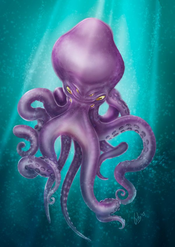 Behance :: Editing Octopus