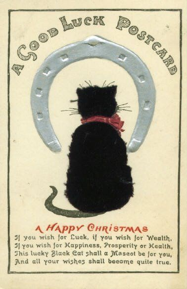 In Which Country Are Black Cats Considered Lucky