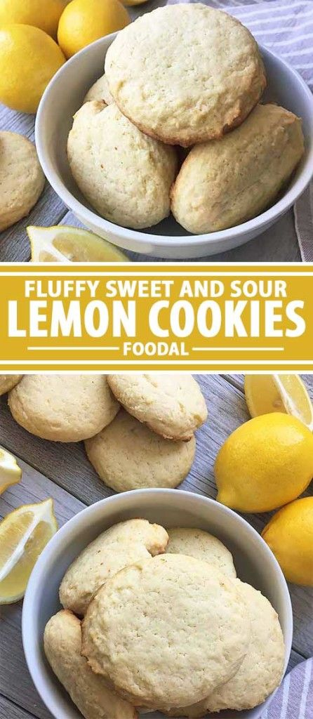 Calling all sweet-and-sour dessert lovers. Foodal has a lemony cookie recipe for you to try. With fresh lemon zest and juice, these treats have very bold flavors, balanced by a subtle sweetness and a soft, creamy texture that will melt in your mouth as you take a big bite. Make our perfectly tart recipe now on Foodal.